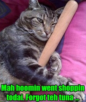 Mah hoomin went shoppin  todai. Forgot teh tuna ...