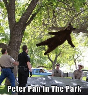 Peter Pan In The Park