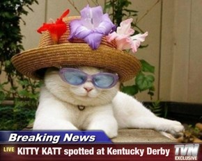 Breaking News - KITTY KATT spotted at Kentucky Derby
