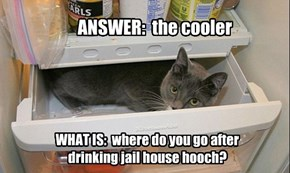 ANSWER:  the cooler