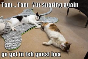 Tom .. Tom   Yur snoring again  go get in teh guest box