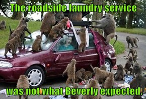 The roadside laundry service   was not what Beverly expected.