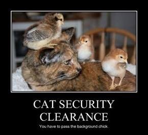 CAT SECURITY CLEARANCE