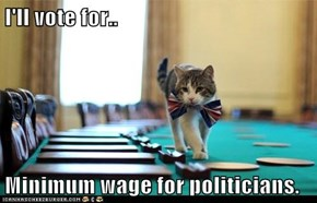 I'll vote for..  Minimum wage for politicians.