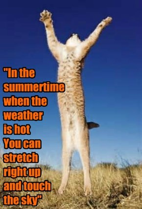 """In the summertime when the weather  is hot You can stretch  right up  and touch  the sky"""