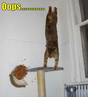 Oops.............