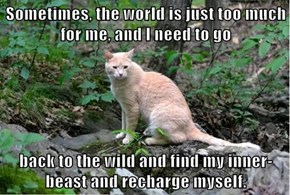 Sometimes, the world is just too much for me, and I need to go  back to the wild and find my inner-beast and recharge myself.