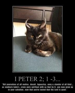 I PETER 2; 1 -3...