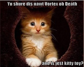 Yu shure dis nawt Vortex ob Death  and is jest kitty toy?