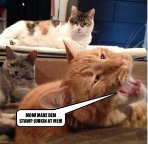 MOM! MAKE DEM STAWP LUUKIN AT MEH!