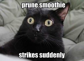 Prune Smoothie