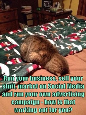 Run your business, sell your stuff, market on Social Media and run your own advertising campaign - how is that working out for you?
