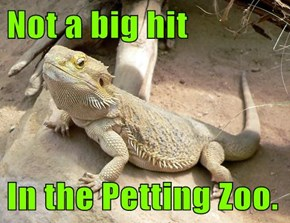 Not a big hit  In the Petting Zoo.