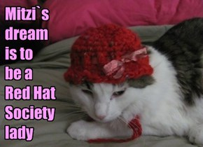 Mitzi`s  dream is to  be a  Red Hat Society lady