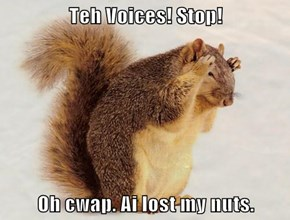 Teh Voices! Stop!   Oh cwap. Ai lost my nuts.