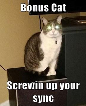 Bonus Cat  Screwin up your sync