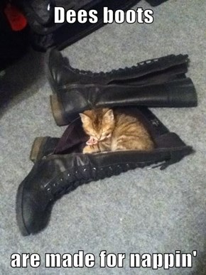 Dees boots  are made for nappin'
