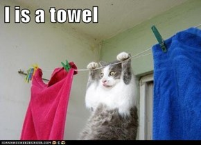 I is a towel
