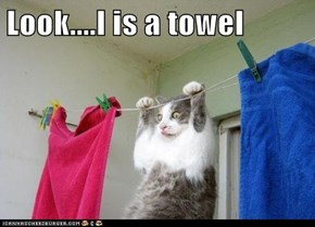 Look....I is a towel