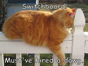 Switchboard!  Must've hired a dawg.