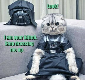 Look!     I am your kitteh.  Stop dressing         me up.