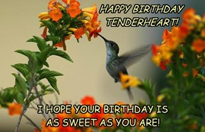 HAPPY BIRTHDAY TENDERHEART!