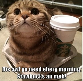 Dis awl yu need ebery morning.                                                                          Stawbucks an meh!