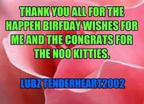 THANK YOU ALL FOR THE HAPPEH BIRFDAY WISHES FOR ME AND THE CONGRATS FOR THE NOO KITTIES.