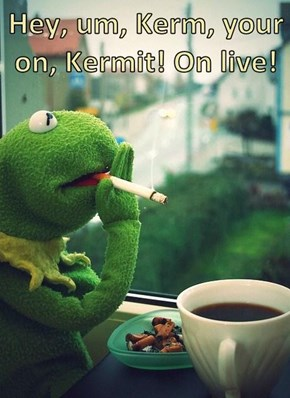 Hey, um, Kerm, your on, Kermit! On live!