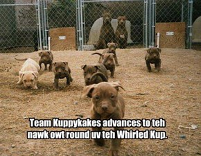 Kuppykakes advances in teh Pawblol tournament.