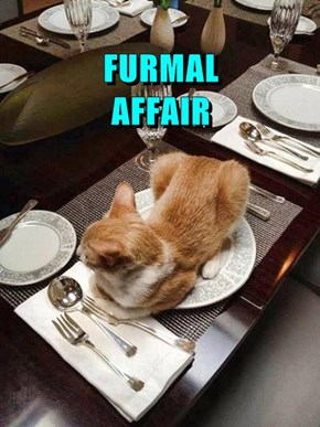 FURMAL                    AFFAIR