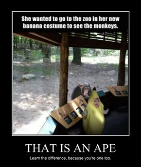THAT IS AN APE
