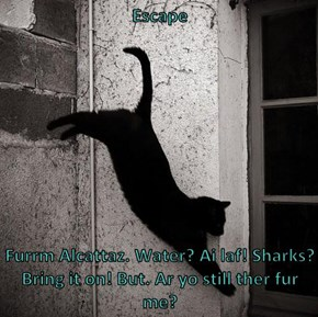 Escape   Furrm Alcattaz. Water? Ai laf! Sharks? Bring it on! But. Ar yo still ther fur me?