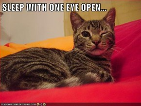SLEEP WITH ONE EYE OPEN...