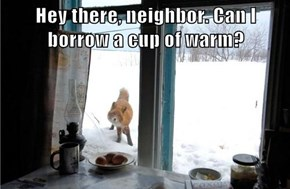 Hey there, neighbor. Can I borrow a cup of warm?