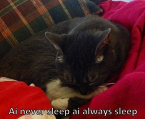 Ai never sleep ai always sleep