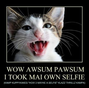 WOW AWSUM PAWSUM I TOOK MAI OWN SELFIE