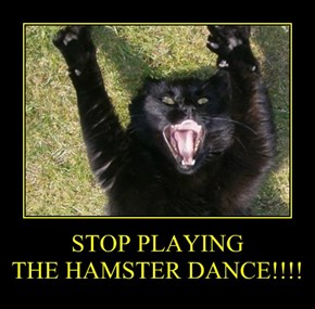 STOP PLAYING THE HAMSTER DANCE!!!!