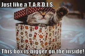 Just like a T.A.R.D.I.S.  This box is bigger on the inside!