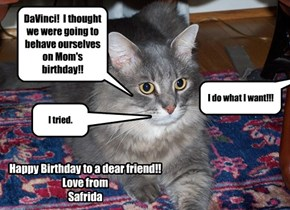 2katmom's Two Cats not on the same page for her Birthday.