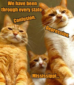 We have been through every state-