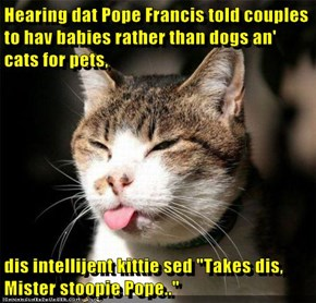 "Hearing dat Pope Francis told couples to hav babies rather than dogs an' cats for pets,   dis intellijent kittie sed ""Takes dis, Mister stoopie Pope.."""