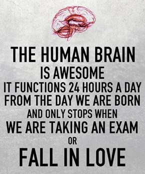 "The Phrase ""When It Counts"" Doesn't Apply to the Human Brain"