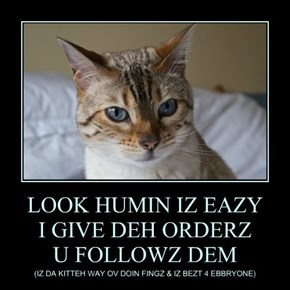 LOOK HUMIN IZ EAZY I GIVE DEH ORDERZ U FOLLOWZ DEM
