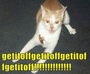 getitoffgetitoffgetitoffgetitoff!!!!!!!!!!!!!!