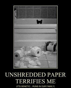 UNSHREDDED PAPER TERRIFIES ME