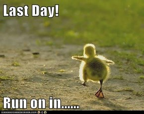 Last Day!  Run on in......
