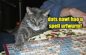 dats nawt hao u spell urfwurm!