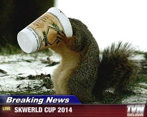 Breaking News -  SKWERLD CUP 2014
