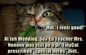 """Mm.. I feelz good!""   At teh Wedding, Sex-Ed Teacher Mrs. Nonono was still on a Dr. TinyCat prescribed ""special herbs"" diet.."